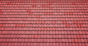 Good roofing cost more but will save much in the future